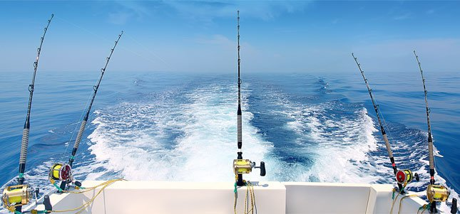Рыбалка в открытом океане